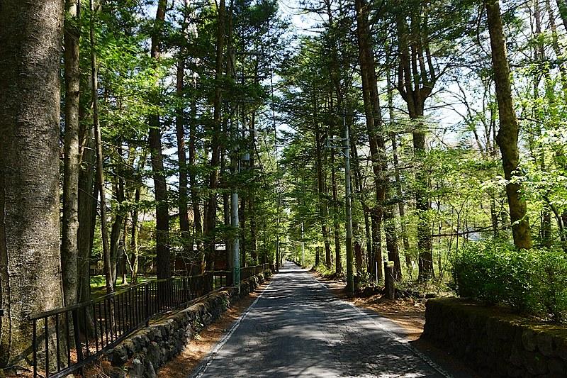 万平通りは、歩いているだけで情緒豊かな味わいがあります。左側がご紹介の別荘。