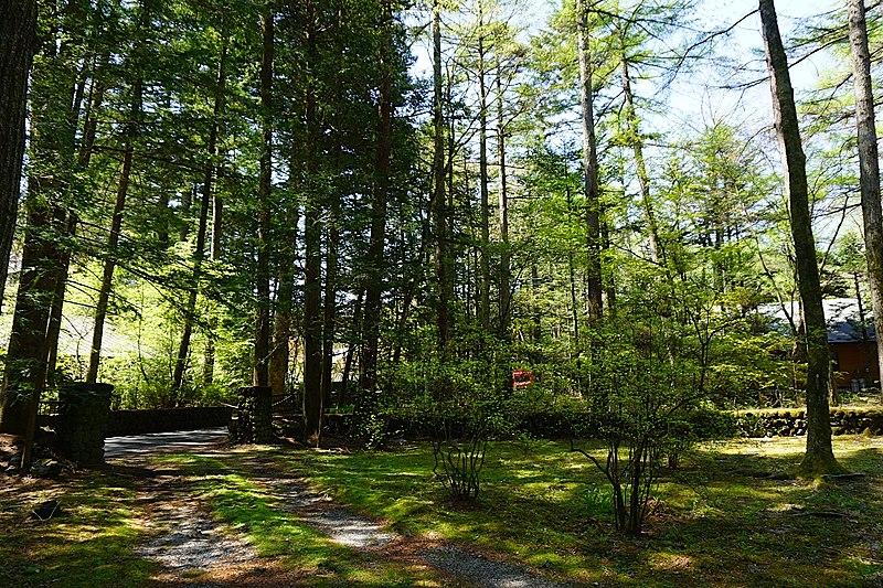 敷地内も緑美しく目に優しい景色です。
