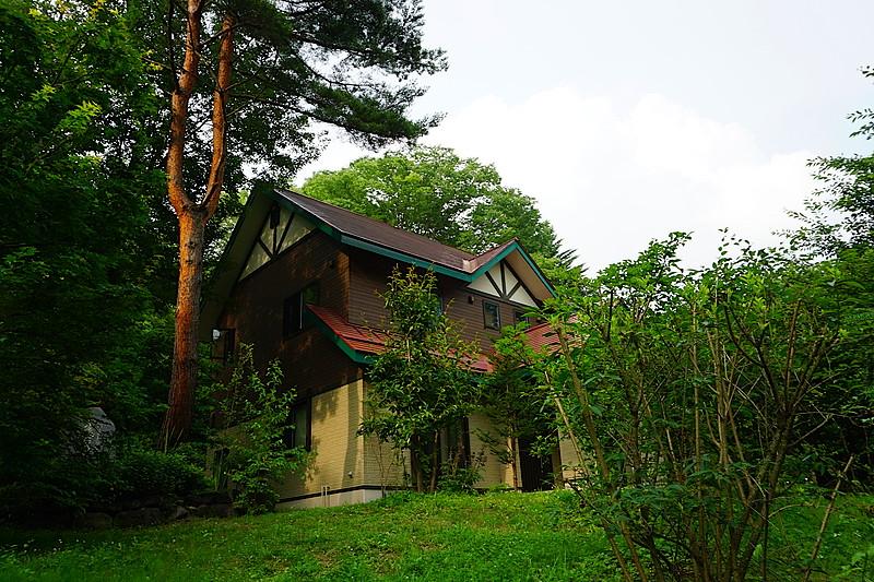 屋根の勾配が急なので、木の葉や枝木がたまることがありません。