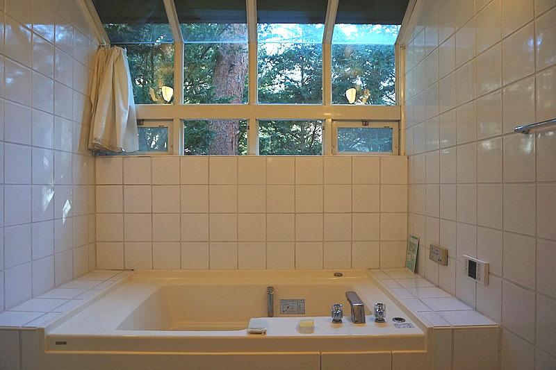 バスルームは、オープンな造り。トイレとランドリースペースも兼ねた空間。