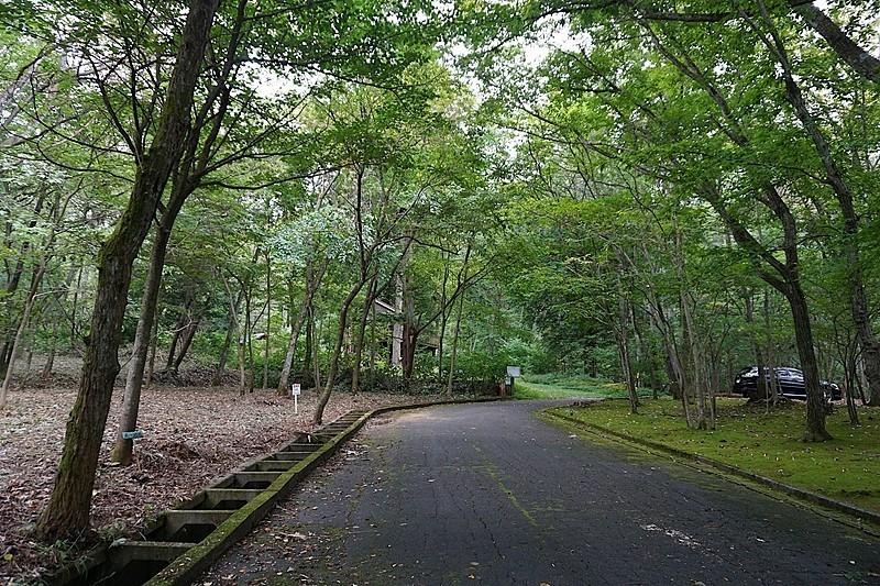 樹木の枝のトンネルをくぐるような別荘地。向かって左手がご紹介の土地です。