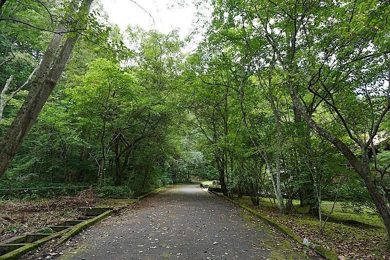 西側方向を撮影。別荘も立ち並んでいるのではなく、森の中に点在しているイメージ。