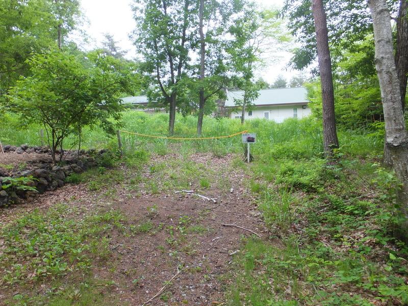 敷地入口より撮影。約294坪の広い土地です。緑に囲まれていますが通年湿度が低く快適です。