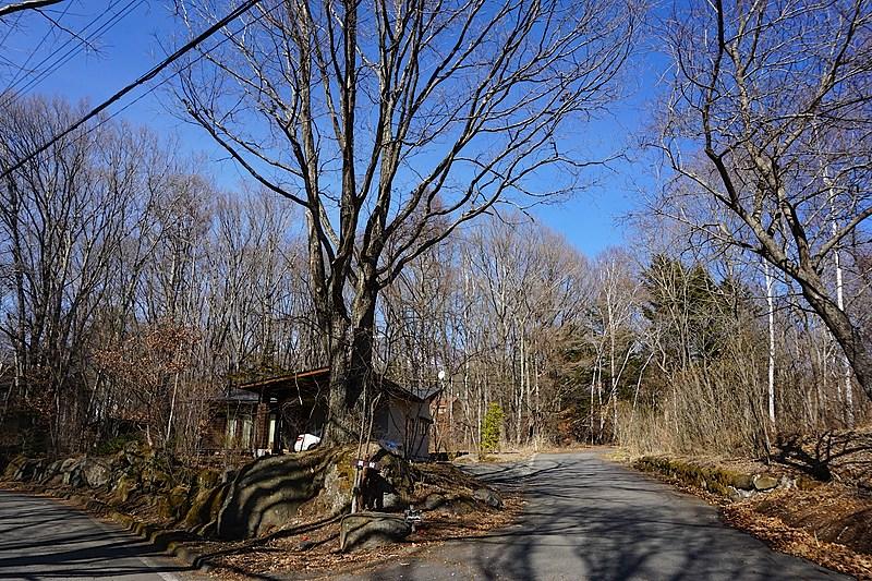 すぐ近くの枝分かれの道。この辺り一帯が、のどかで静かな別荘地。