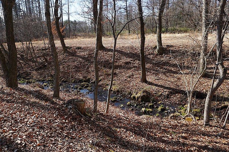 敷地の中をさらさらと小川が流れていて、癒し効果抜群。