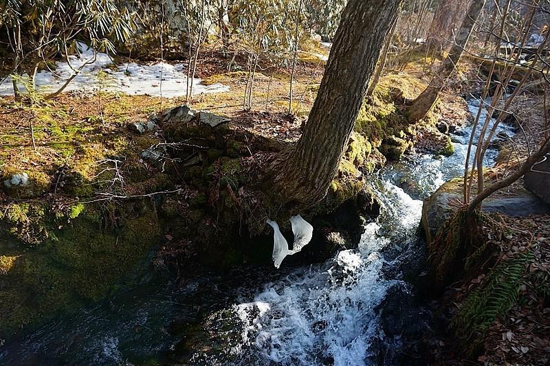 近くの渓流。お散歩道途中、こんな景色にも癒されます。