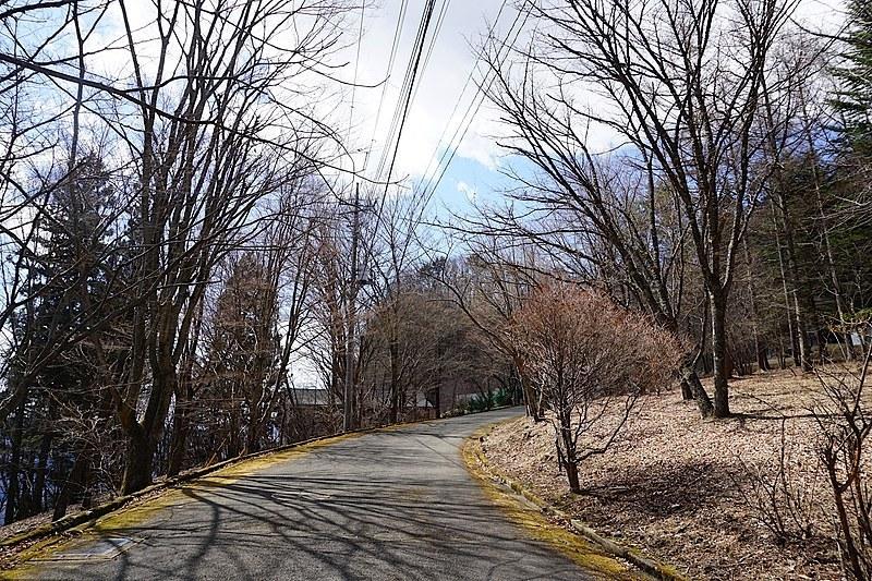 ゆるいカーブの道も、美景観の一役に。