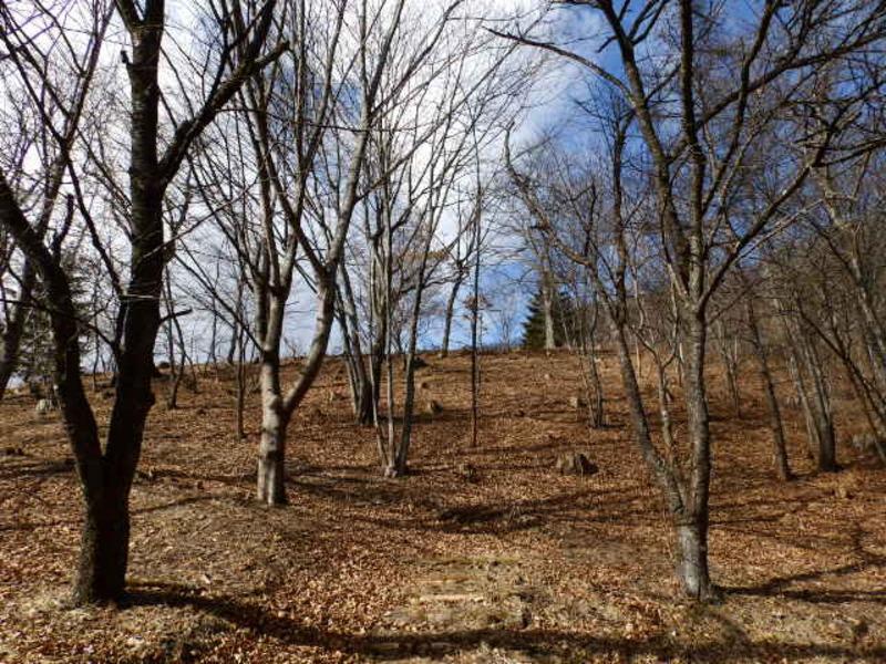 和美湖ゾーン2-3区画。傾斜の土地を生かした建築プランを練ってみてください。和美湖が望めるエリア内の土地。