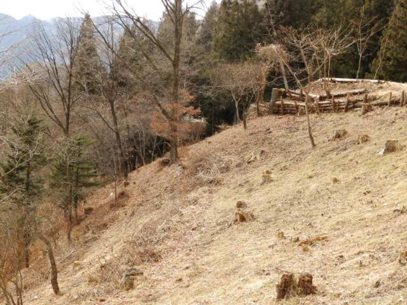 和美湖ゾーン7-9区画。下の道路まで傾斜が続く土地です。景観を最大限に生かした別荘をぜひ。