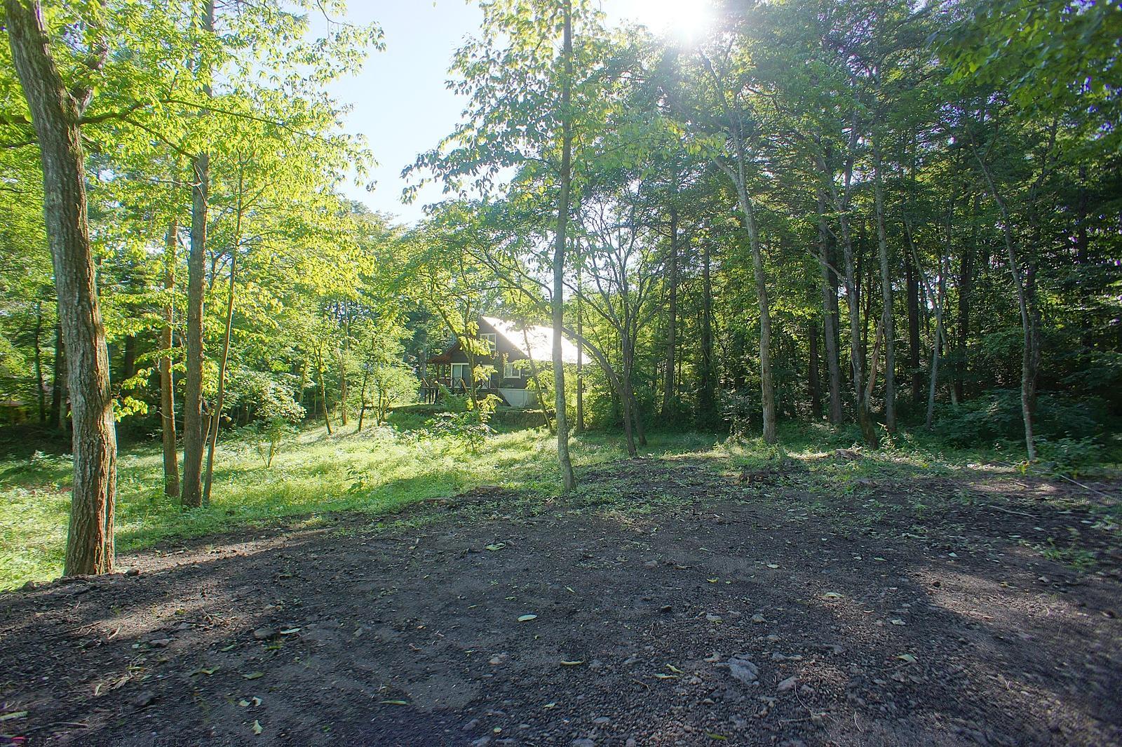 敷地中央を望む。緑に覆われて、太陽の光を浴びたら、ストレスも吹き飛んでいくことでしょう。