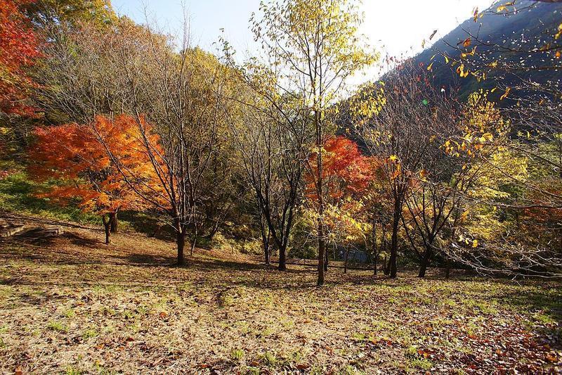 妙義ビューゾーン12-3区画。なだらかな傾斜の土地で建築しやすい土地。日当たりも良く、開けた土地です。