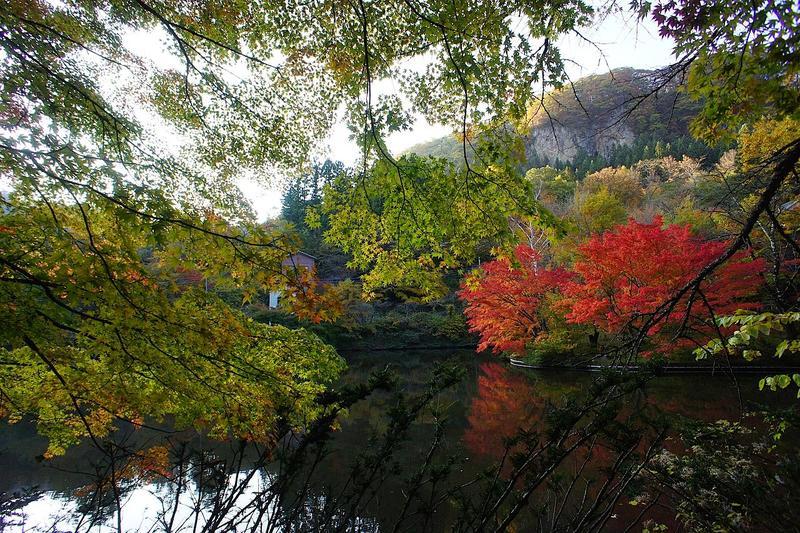 和美湖ゾーンの中心にある和美湖。紅葉の季節には水面が鮮やかに彩られます。