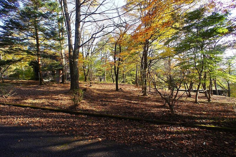 和美湖ゾーン5-1区画。二面道路に接していて、敷地内は平坦。新緑や、紅葉の季節が待ちきれない。
