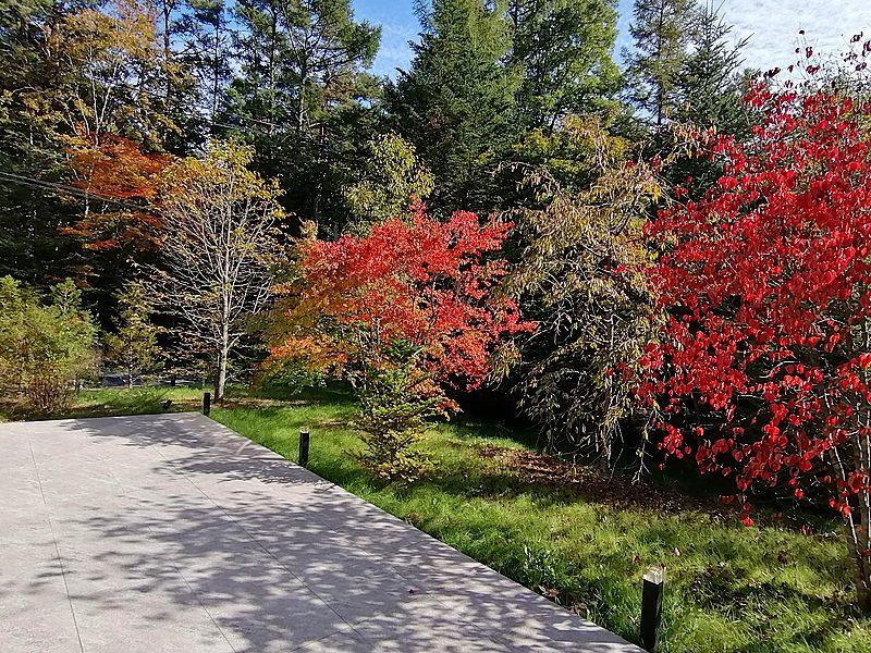 季節の移り変わりを楽しみながら過ごせるのは、軽井沢の醍醐味です。