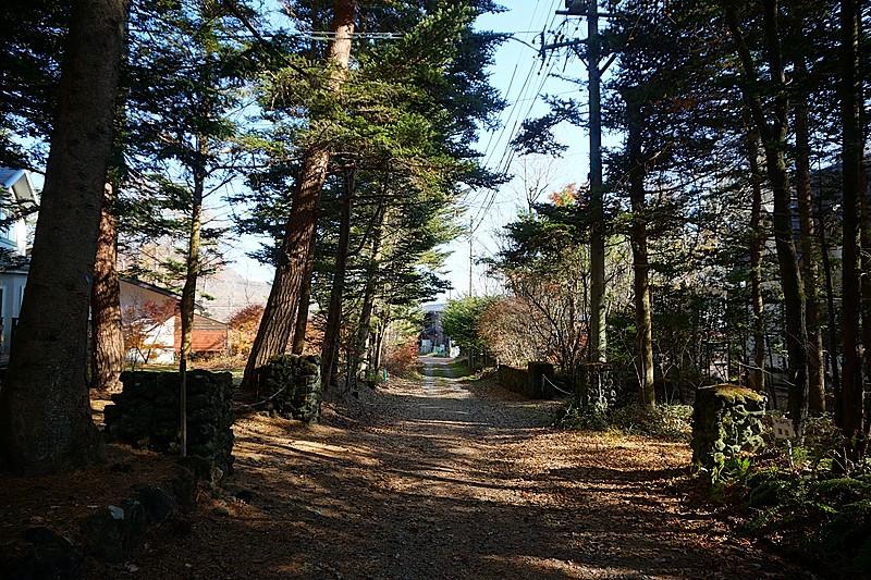 北側接道。向かって右手前がお別荘です。石積みの門と立ち並ぶ樹木がいかにも別荘地らしい佇まい。