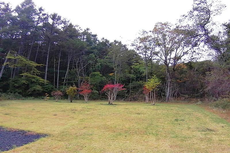 芝庭の西側