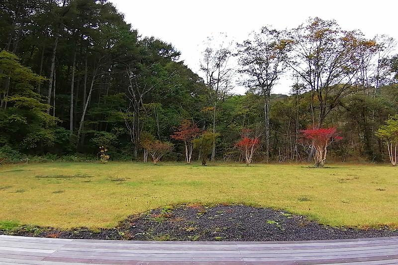 南側の広い芝庭